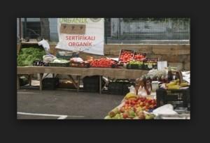 organik gıdalar